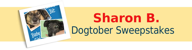 Dog.com's Dogtober Sweepstakes Winner