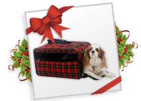 Bark n Bag® Barkwell Plaid Classic Pet Carrier!