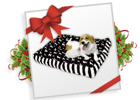 Happy Hounds™ Buster Pillow!