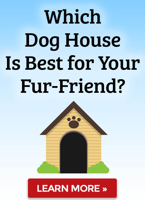 Which Dog House Is Best for Your Fur-Friend?