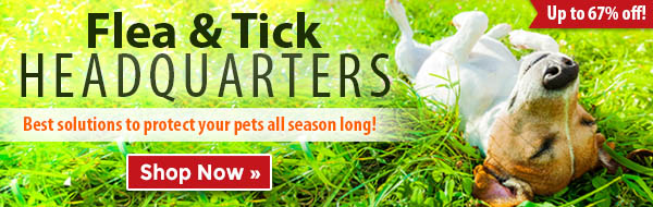 Flea & Tick Guide - Best solutions to protect your pets all season long! Up to 67% off!